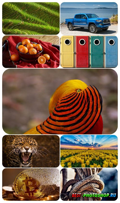 Beautiful Mixed Wallpapers Pack 842