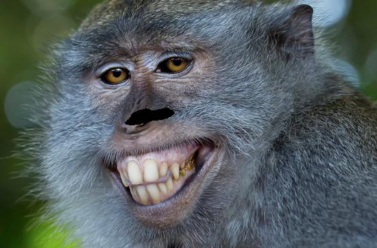 Вставить лицо в фото онлайн - Улыбка обезьяны