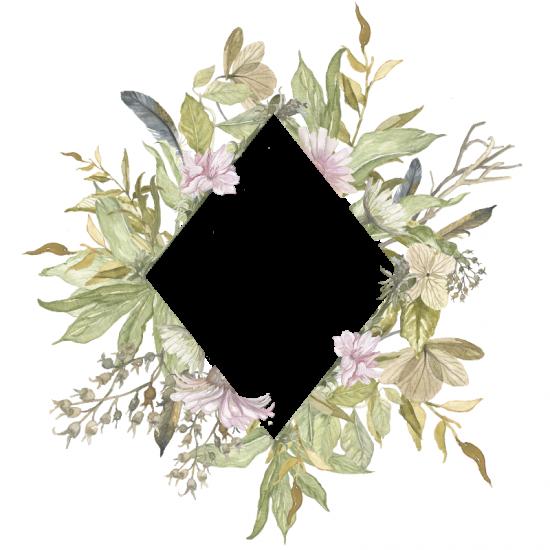 Фото в рамку онлайн бесплатно - Цветы