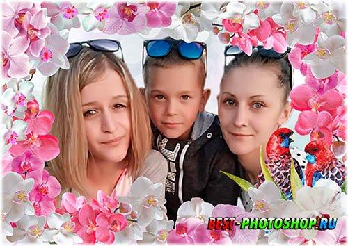 Шаблон для фотошопа женская рамка - Орхидеи