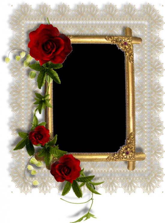 Рамка для фото онлайн - Розы