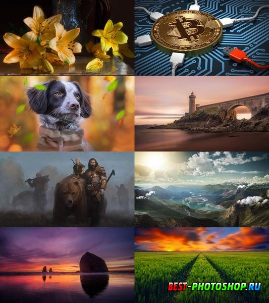 Wallpapers Mix №843