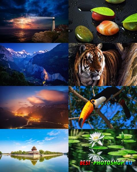 Wallpapers Mix №846