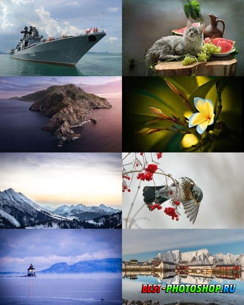 Wallpapers Mix №848