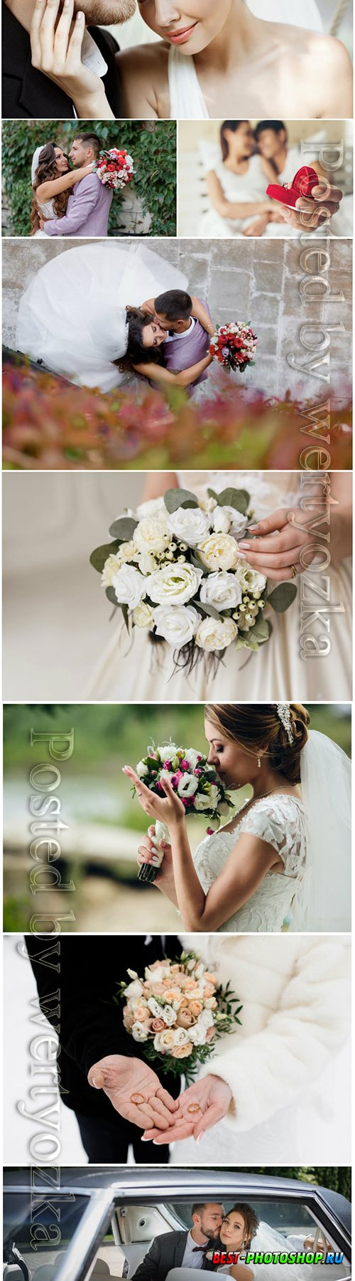 Wedding stock photo, bride and groom