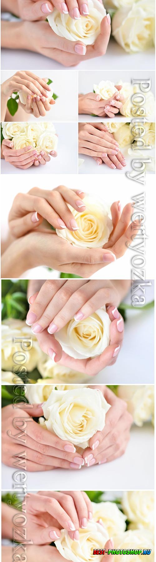 Hands of a woman with beautiful french manicure