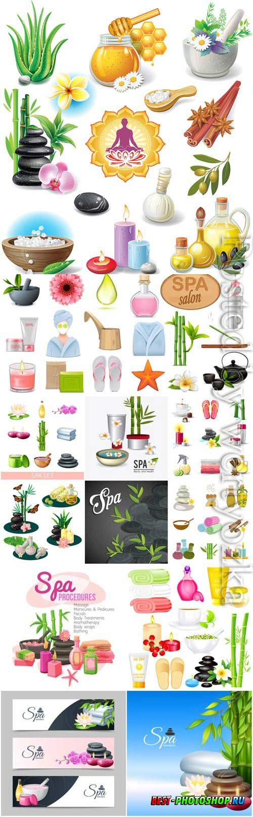 Elements for beauty, spa elements in vector