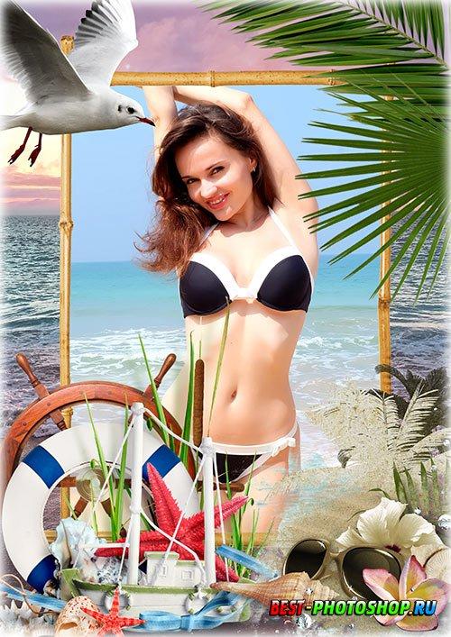 Летняя рамка psd - Море, пальмы, чайки