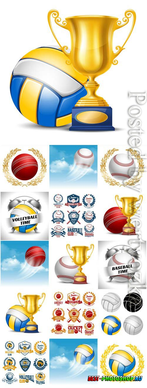 Sports items, balls and cups in vector