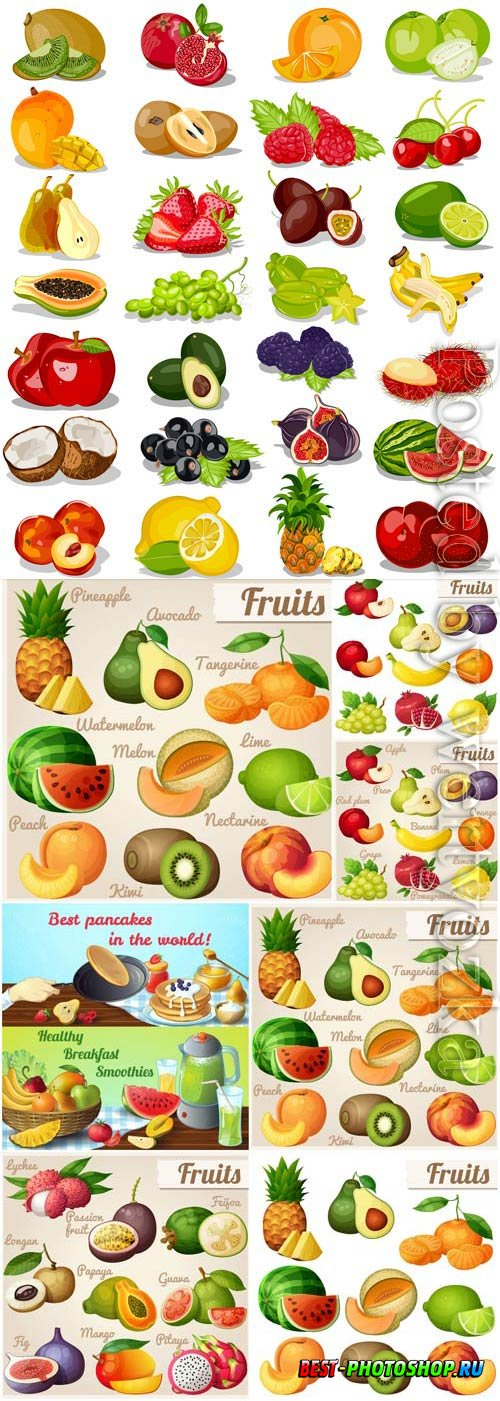 Set of tropical fruits and various berries in vector