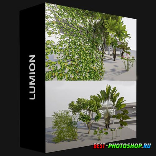 LUMION TREES 3D MODELS COLLECTION