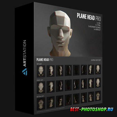 ARTSTATION PLANE HEAD PRO BUNDLE MODEL PDF BOOKLET CHEAT SHEETS