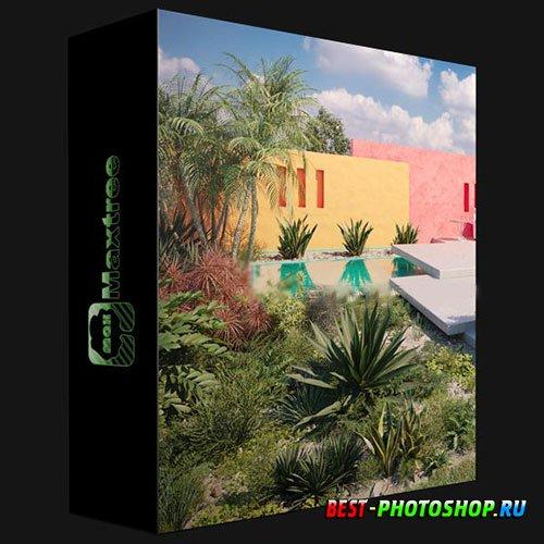 MAXTREE – PLANT MODELS VOL 75