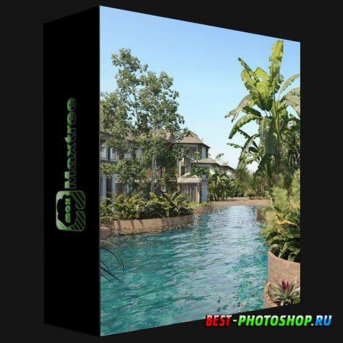 MAXTREE – PLANT MODELS VOL 72